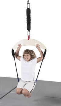 Active Play Swings, Item Number 017047