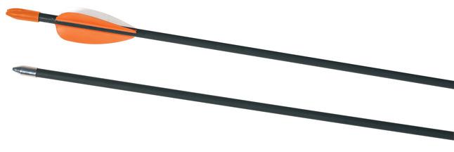Archery, Archery, Archery Targets, Item Number 022389