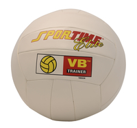 Volleyballs, Volleyball Balls, Volleyballs in Bulk, Item Number 023783