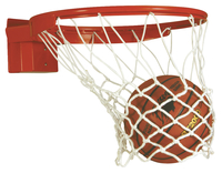 Basketball Hoops, Basketball Goals, Basketball Rims, Item Number 029275