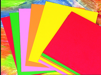 Colored Copy Paper, Item Number 036017