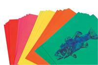 Colored Copy Paper, Item Number 054453