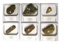 Rocks, Minerals, Fossils Supplies, Item Number 060-5758