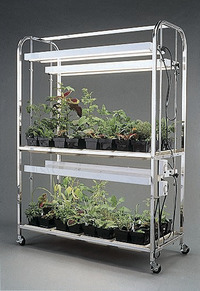Botany, Gardening Supplies, Botany Supplies, Item Number 070-5638