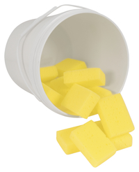 Paint Sponges, Item Number 085851