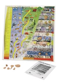 Rocks, Minerals, Fossils Supplies, Item Number 087709