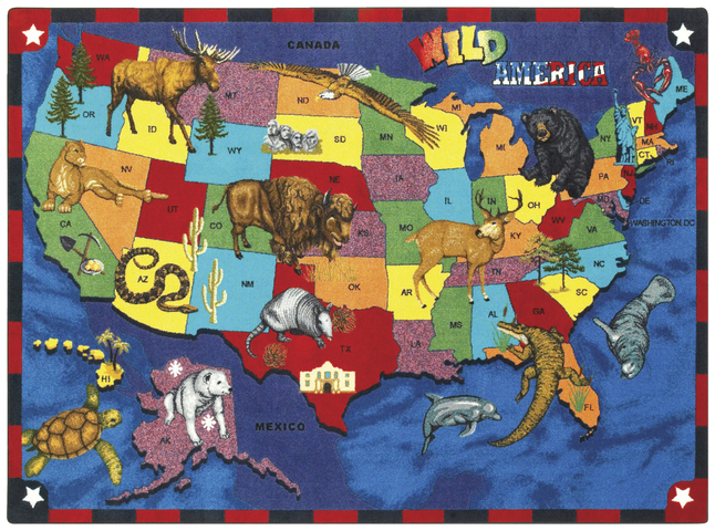 World Map Rugs, Geography Rugs, Map Rugs Supplies, Item Number 091684