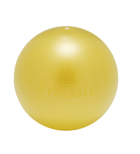 Therapy Balls, Large Inflatable Ball, Item Number 1004586