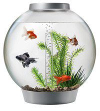 Aquariums, Terrariums & Supplies, Aquarium Supplies, Terrarium Supplies, Item Number 1014907