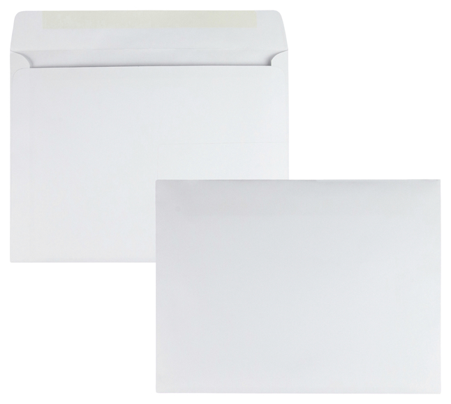 Catalog Envelopes and Booklet Envelopes, Item Number 1066395
