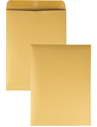 Catalog Envelopes and Booklet Envelopes, Item Number 1066459