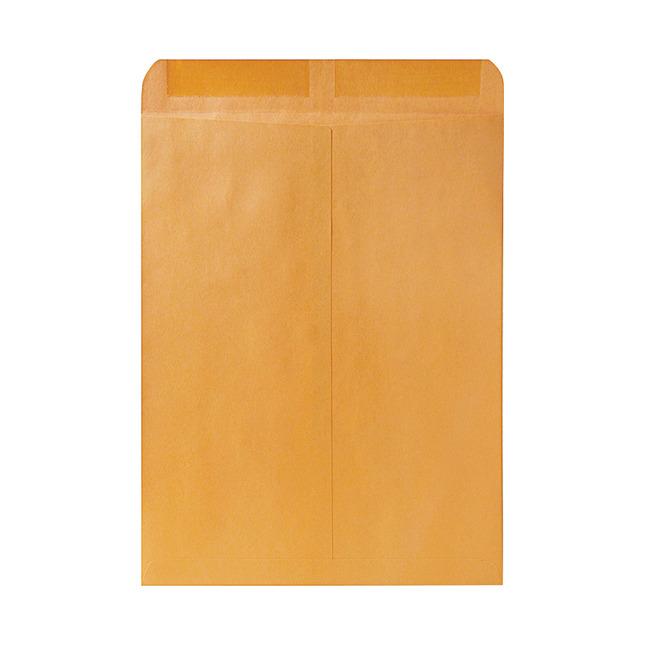 Catalog Envelopes and Booklet Envelopes, Item Number 1066481