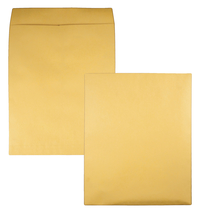 Catalog Envelopes and Booklet Envelopes, Item Number 1066484