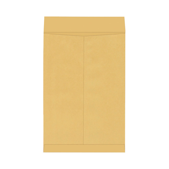 Catalog Envelopes and Booklet Envelopes, Item Number 1066485