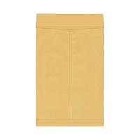 Catalog Envelopes and Booklet Envelopes, Item Number 1066486