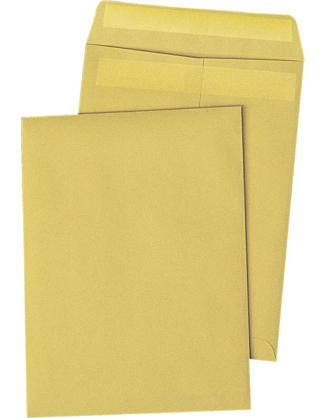Catalog Envelopes and Booklet Envelopes, Item Number 1066498