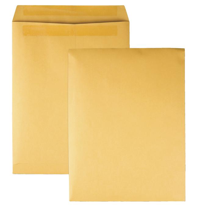 Catalog Envelopes and Booklet Envelopes, Item Number 1066504