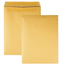 Catalog Envelopes and Booklet Envelopes, Item Number 1066504