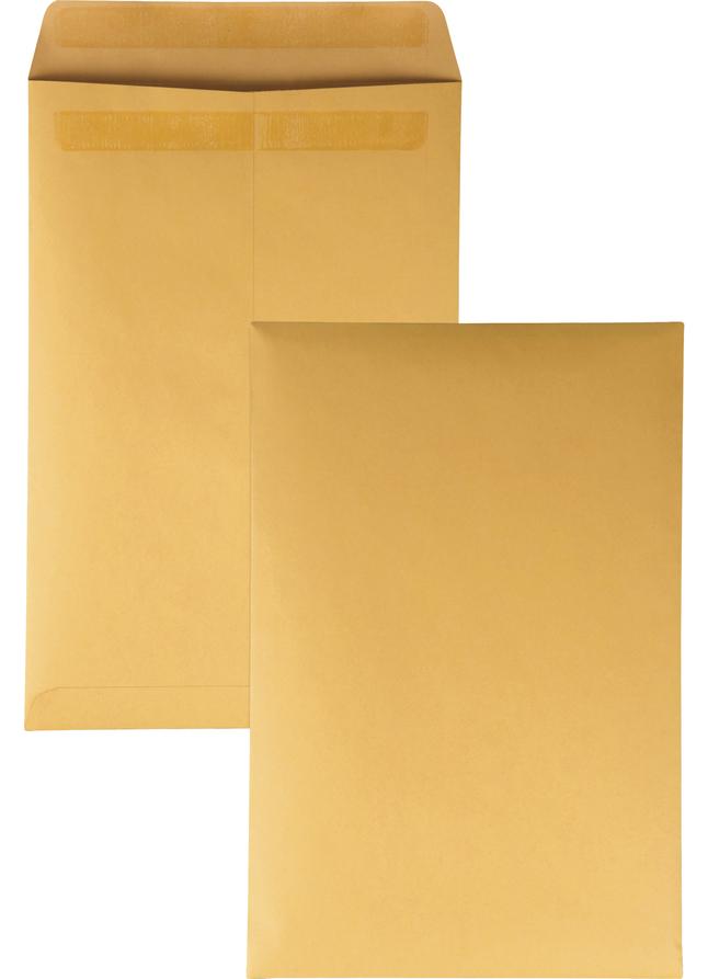 Catalog Envelopes and Booklet Envelopes, Item Number 1066506