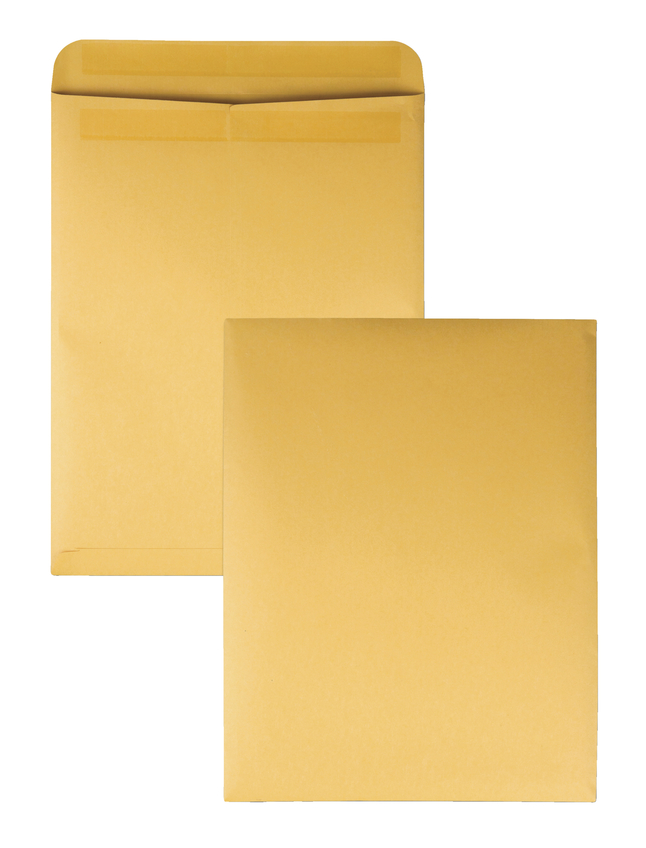 Catalog Envelopes and Booklet Envelopes, Item Number 1066509