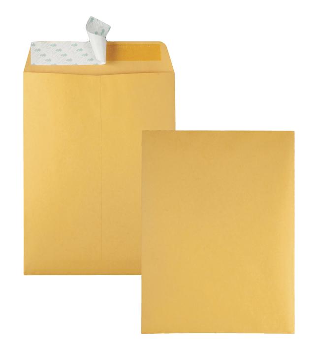 Catalog Envelopes and Booklet Envelopes, Item Number 1066510