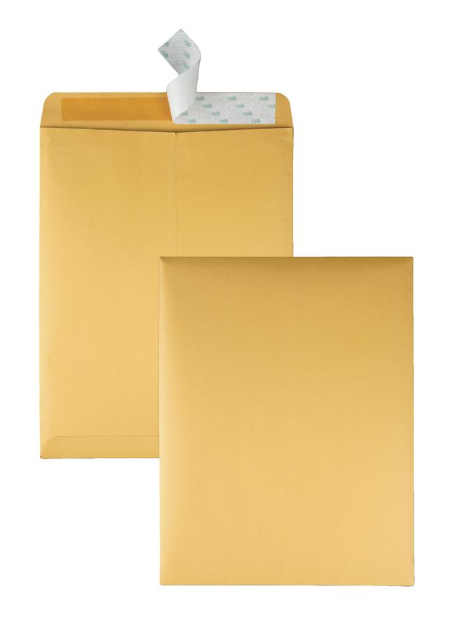 Catalog Envelopes and Booklet Envelopes, Item Number 1066513