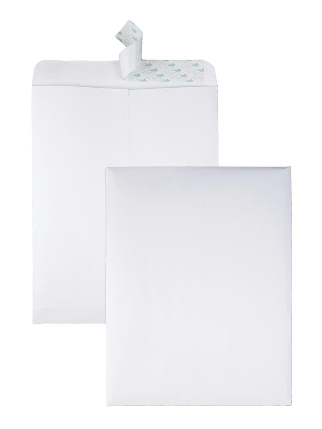 Catalog Envelopes and Booklet Envelopes, Item Number 1066514