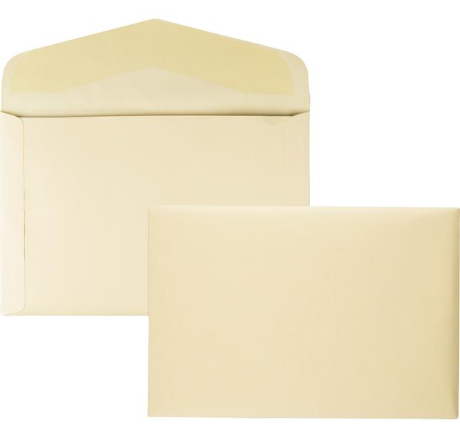 Catalog Envelopes and Booklet Envelopes, Item Number 1066572