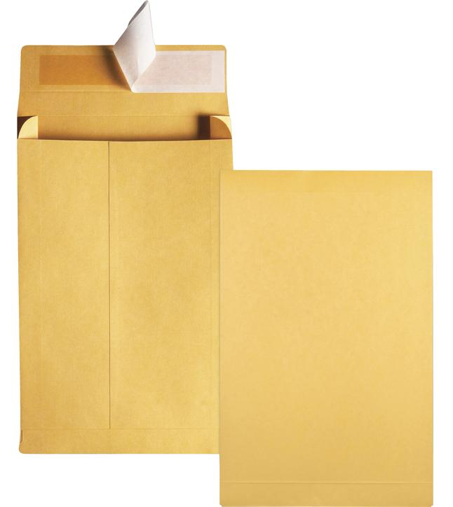 Catalog Envelopes and Booklet Envelopes, Item Number 1066624