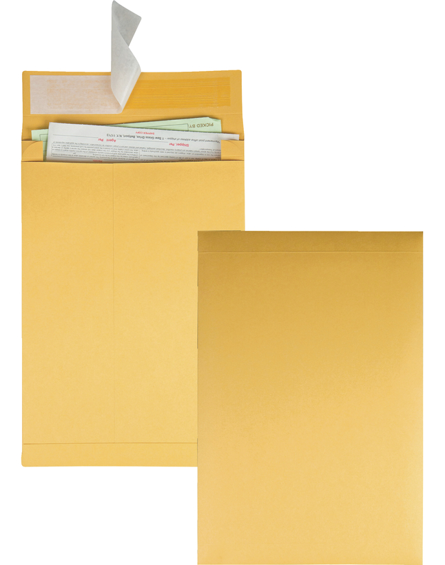 Catalog Envelopes and Booklet Envelopes, Item Number 1066625