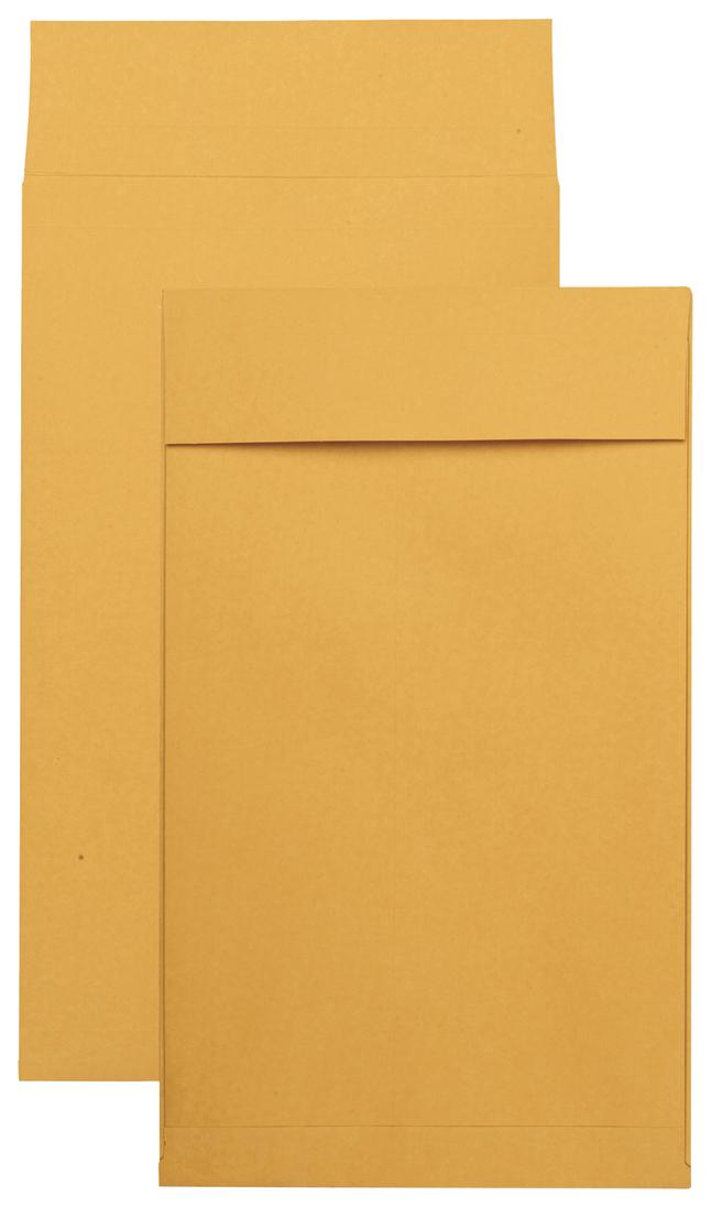 Catalog Envelopes and Booklet Envelopes, Item Number 1066626