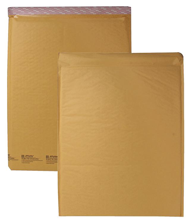 Manila Envelopes and Clasp Envelopes, Item Number 1068156