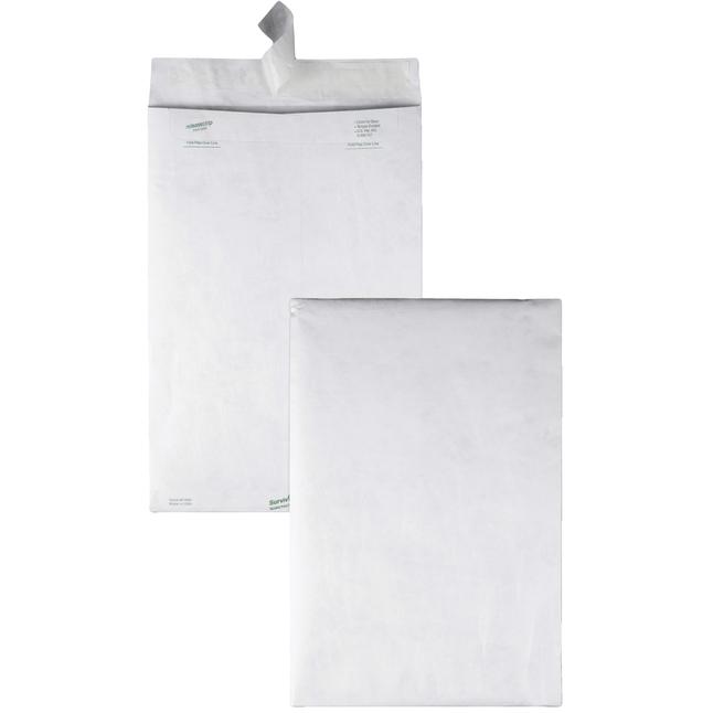 Tyvek Envelopes, Item Number 1079646
