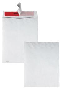 Tyvek Envelopes, Item Number 1079653