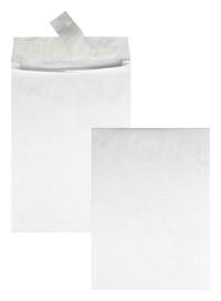 Tyvek Envelopes, Item Number 1079659