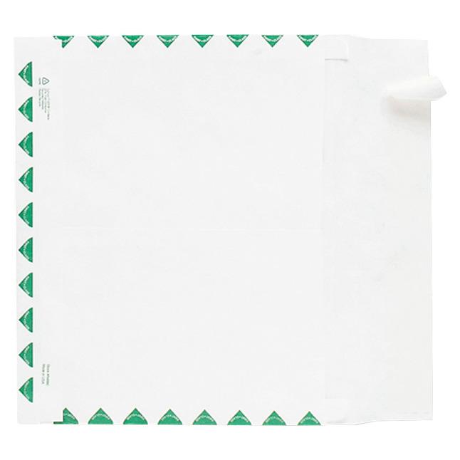 Tyvek Envelopes, Item Number 1079668