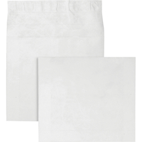 Tyvek Envelopes, Item Number 1079673