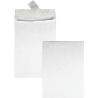 Tyvek Envelopes, Item Number 1079674