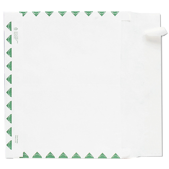 Tyvek Envelopes, Item Number 1079675