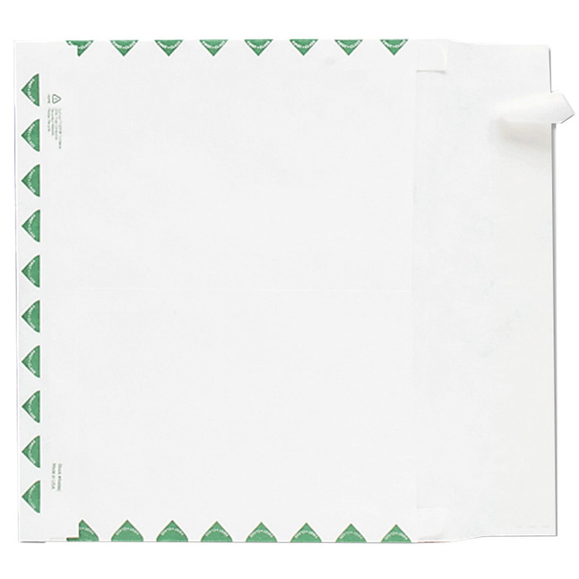 Tyvek Envelopes, Item Number 1079679