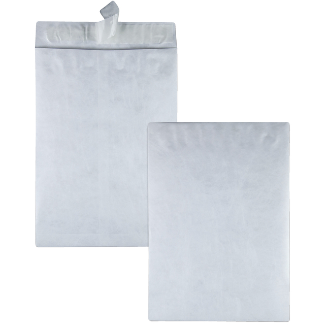 Tyvek Envelopes, Item Number 1079684