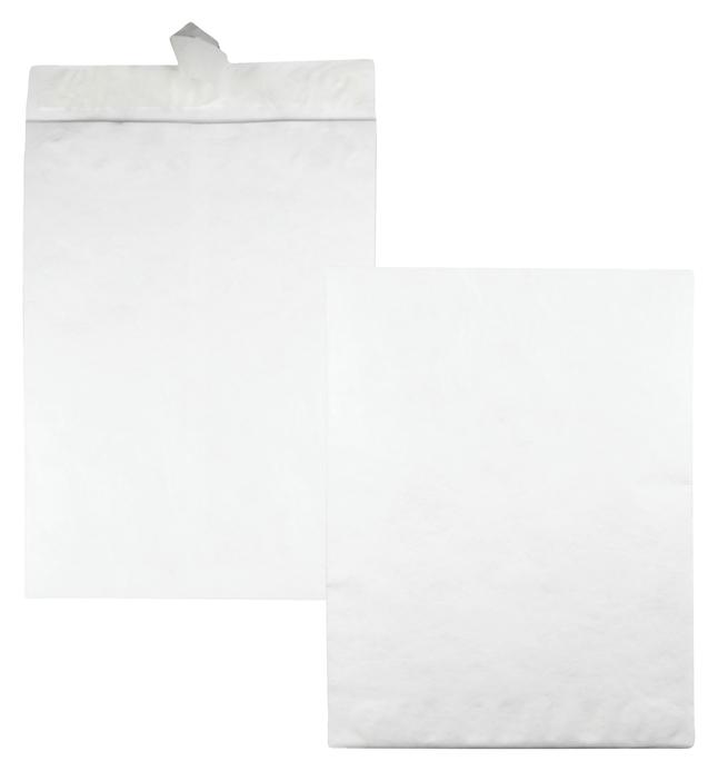Tyvek Envelopes, Item Number 1079685