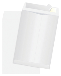 Tyvek Envelopes, Item Number 1079687