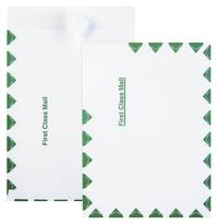 Catalog Envelopes and Booklet Envelopes, Item Number 1079699