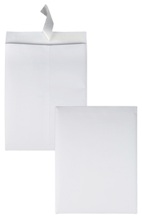 Catalog Envelopes and Booklet Envelopes, Item Number 1079700