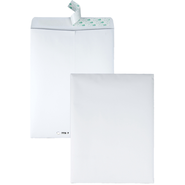 Tyvek Envelopes, Item Number 1121335