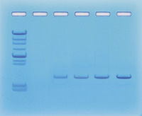 Science Kit, Item Number 1293213