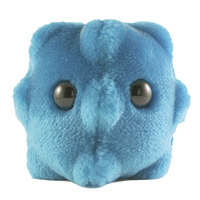 Microbology Supplies, Item Number 1302686