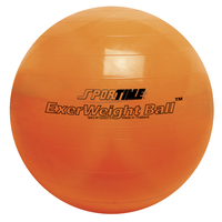 Therapy Balls, Large Inflatable Ball, Item Number 1320273