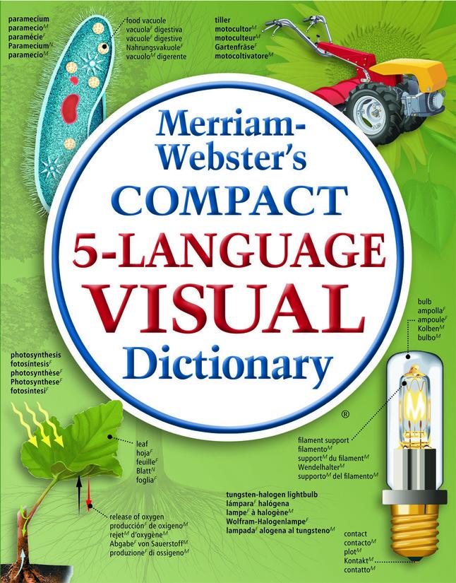 Dictionary, Item Number 1374892